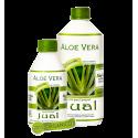 Organic Aloe Vera + Chlorophyll Juice Ginger Flavor